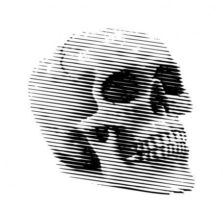 Plecháček lebka 360 ml